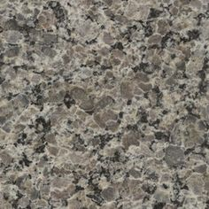 Merveilleux SenSa 2 In W X 3 In L Caledonia Granite Countertop Sample