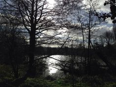 Walking in the sunshine in serene Surrey