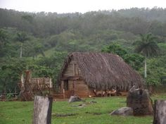 Casa de Tobacco - Tobacco House (barn) in Viñales, Cuba, setting for Caribbean Freedom, third & final Island Legacy Novel. For more info, visit www.terimetts.com and check under Novels.