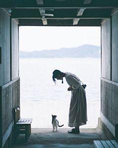 ねこちゃんたちにまた会いたい。Photo by maru☃︎ in Japan with @pere_peri_peru_ Life Is An Adventure, Greatest Adventure, Photography Women, Color Photography, Japanese Cat, Foto Pose, Photo Retouching, Daily Photo, Pose Reference