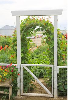 The gate has a double sided hinge so it swings both ways - especially nice when youre carrying loads of produce out of the garden. Scarlet Runner Beans on the arch. - My Garden Window Potager Garden, Garden Landscaping, Farm Gardens, Outdoor Gardens, Garden Gates And Fencing, Fences, Garden Structures, Dream Garden, Garden Planning