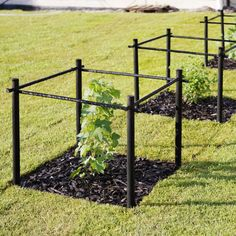 Bring Contrast Into Your Garden Design - Gardening Patio Garden, Garden Projects, Garden, Garden Trellis, Urban Garden, Growing Gardens, Outdoor Gardens Design, Outdoor Gardens, Home Vegetable Garden