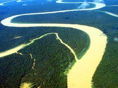 """Situada na região norte da América do Sul, a floresta amazônica possui uma extensão de aproximadamente 7 mil quilômetros quadrados, espalhada por territórios do Brasil, Venezuela, Colômbia, Peru, Bolívia, Equador, Suriname, Guiana e Guiana Francesa. Porém, a maior parte da floresta está presente em território brasileiro (estados do Amazonas, Amapa, Rondônia, Acre, Pará e Roraima). Em função de sua biodiversidade e importância, foi apelidada de o """"pulmão do mundo""""."""