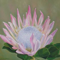 protea | King Protea Painting