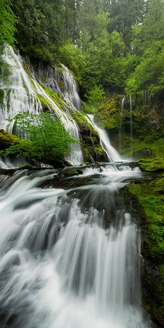 Panther Creek Falls, Washington State - 2 tiers of segmented waterfalls, 50-70 feet in height. They both empty into the same basin. Skamania County