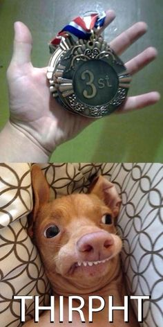 A winner is you!  // funny pictures - funny photos - funny images - funny pics - funny quotes - #lol #humor #funnypictures