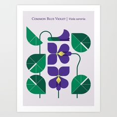 Blue Violet Art Print by Christopher Dina - X-Small Plant Illustration, Botanical Illustration, Digital Illustration, Graphic Illustration, Gig Poster, Flat Design, Affinity Designer, Happy Design, Geometric Art