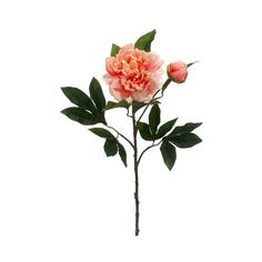 """Silk Peonies Spray in Salmon Peach5"""" Bloom x 30"""" Tall (6.92 CAD) ❤ liked on Polyvore featuring home, home decor, floral decor, flower home decor and flower stem"""