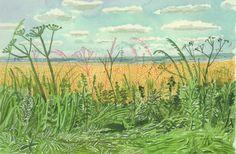 """ David Hockney, Yorkshire - midsummer roadside plants and landscape, Watercolor, 2004 "" David Hockney Artwork, David Hockney Landscapes, David Hockney Artist, David Hockney Ipad, Landscape Drawings, Watercolor Landscape, Abstract Landscape, Landscape Paintings, Watercolor Ideas"