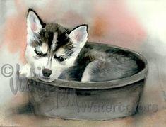 KLEE KAI SIBERIAN Husky Puppy Dog Pet Portrait Art by k9stein, $22.50