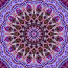 """""""Michaelmas Daisy Luxe"""" Mandala (signed) - available at http://www.imagekind.com/Michaelmas-Daisy-Luxe-Mandala-art?IMID=e9548c73-2a4a-41e6-b0d3-f7d0925fe107# and at http://www.zazzle.com/michaelmas_daisy_luxe_mandala-192049382264103582#?rf=238379042401730082 - click to enlarge view in new tab"""