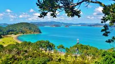 All of New Zeeland is wonderful, but Paihia and Bay of Islands, way up north, is the icing on the cake. New Zealand Cruises, New Zealand Tours, New Zealand North, New Zealand Travel, Beautiful Places To Visit, Places To See, New Zealand Beach, Bay Of Islands, Dream Vacations
