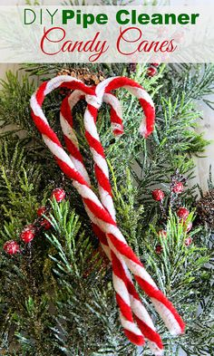 How to make pipe cleaner candy canes for Christmas decor. A super simple five-minute holiday craft even the kids will love making.