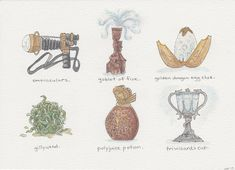 "Harry Potter and the Goblet of Fire -- A series of ""artifacts"" from the wizarding world -- Ink and watercolor Illustrations by Hannah B Pacious -  Book 4"