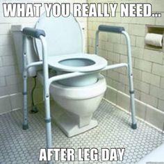 Leg Day Memes, Funny Toilet Leg Day Meme
