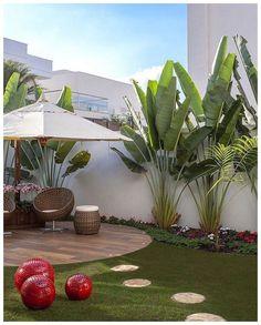 Tropical Backyard Ideas: Beautifully Refreshing Decors to Copy – front yard design modern Tropical Landscaping, Front Yard Landscaping, Landscaping Ideas, Tropical Gardens, Outdoor Landscaping, Palm Trees Landscaping, Acreage Landscaping, Backyard Garden Design, Backyard Patio