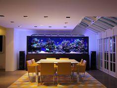 Luxury Aquarium Design - Creates an unique focal point at this exquisite home - Luisa Marine Aquarium, Marine Fish, Reef Aquarium, Saltwater Aquarium, Aquarium Fish Tank, Planted Aquarium, Fish Tanks, Reef Tanks, Marine Tank