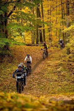 Fall mountain biking MTB XC Bike. Come And Visit Us At -http://WhatIsTheBestMountainBike.com/