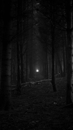 Photo by Micah Moreland Dark Photography, Black And White Photography, Scary Wallpaper, Devil Aesthetic, Dark Gothic, Dark Places, Nocturne, Dark Fantasy, Aesthetic Wallpapers