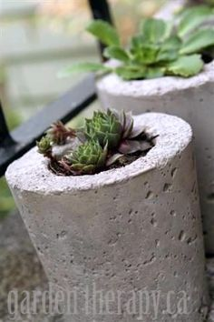 How to make modern-looking DIY planters out of concrete and  the recycling bin!