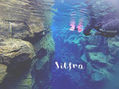 Silfra snorkelling. Awesome!  #silfra #snorkelling #iceland