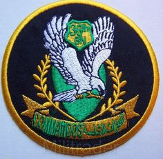 ISAF International Security Assistance Force ACU Patch