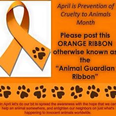 """""""April is prevention of cruelty to animals month #education #puppy #alldogs #educate #ilovedogs #Foster #animals #animaladvocate #banthedeednotthebreed…"""""""