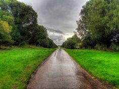 photography, rain