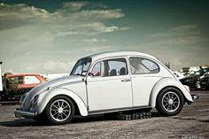 Cool bug...