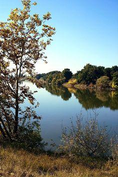 Autumn comes to the Sacramento river