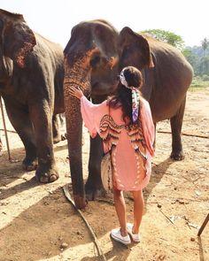 Babies #SriLanka Pinawella