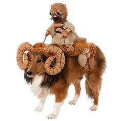Star Wars Bantha Rider Pet Costume