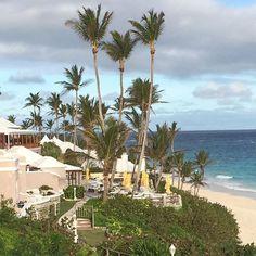 December in Bermuda @coralbeachbda #gotobermuda #coralbeachbda