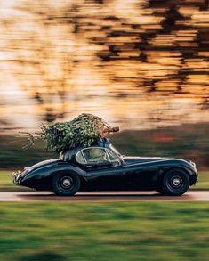 Très Bon Goût Outdoor Christmas Decorations, Outdoor Decor, Cool Tumblr, Christmas Delivery, Wall Treatments, Home Decor Trends, Luxury Living, Home Accents, Exterior