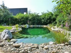 Schwimmteich selber bauen: 13 märchenhafte Gestaltungsideen Build the swimming pond yourself: 13 fairytale design ideas Swimming Pool Pond, Natural Swimming Ponds, Natural Pond, In Ground Pools, Above Ground Pool, Piscina Diy, Water Features In The Garden, Dream Pools, Ponds Backyard