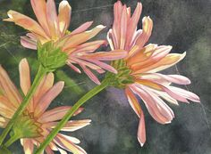 Peach Chrysanthemums Painting  - Peach Chrysanthemums Fine Art Print