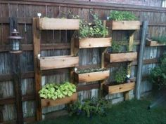 Pallets...this would be great for an herb garden.  Would possibly keep the neighborhood stray cats out of them a tad better than pots on the deck!
