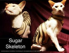 Stretchy and a little bit sheer, the Sugar Skeleton is a stylized black skeleton on a nude background.    Because of the huge amount of orders for T