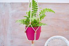 DIY Macrame pot plant hanger