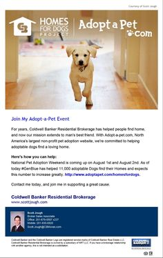 This Weekend, Coldwell Banker Is Partnering With Adopt-A-Pet.com To Host One Of The Biggest Pet Adoption Events Of The Year - The Homes For #Dogs National Pet #Adoption Weekend.  #MansBestFriend