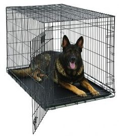 MidWest Life Stages Folding Metal Dog Crate Double Door 48 Inch w Divider Large Dog Breeds, Large Dogs, Small Dogs, Xxxl Dog Crate, Dog Crate Divider, Extra Large Dog Crate, Wire Dog Crates, Pets