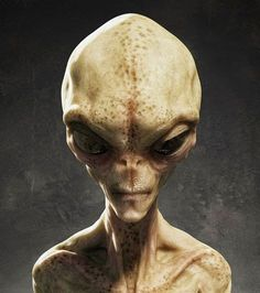 A FORMER US marine has sensationally claimed that he has spent nearly a decade battling ALIENS on Mars. The ex marine, who goes by the name of Captain Kaye, says that there are five human colonies on the Red Planet and he has spent 17 years fighting. Les Aliens, Aliens And Ufos, Ancient Aliens, Science Fiction, Alien Proof, Alien Theories, Alien Encounters, Grey Alien, Alien Concept Art