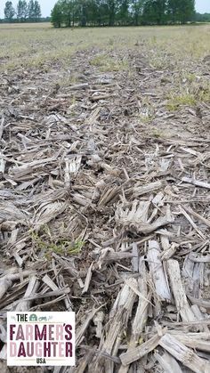 """You've heard farmers throw around the word """"no-till"""" but do you actually know what it means, or what the benefits are?"""