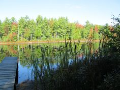 Dorner Lake near Wellston, Michigan where we spent many summers in our little cabin in the woods.  (photo taken Sept 2012)