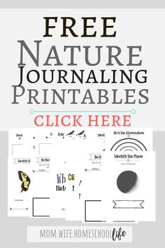 Free Nature Journaling Pages for use with Nature Anatomy by Julia Rothman. (<< This is an affiliate link. Kindergarten, Preschool Curriculum, Homeschooling, Montessori Science, Montessori Classroom, Charlotte Mason Curriculum, Nature Activities, Outdoor Activities, Science Nature