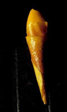 277 |   cornete de mango con su sorbete (el Bulli, 1994, petits fours)