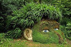 Lost Gardens in Cornovaglia Sono stati considerati tra i più bei giardini di tutta la Gran Bretagna. Ideati alla fine del '700 , lo stile è quello delle decorazioni botaniche del diciannovesimo secolo.