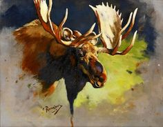 Carl C. M. Rungius (American, 1869-1959) 'Study Of A Moose Head', O/C signed