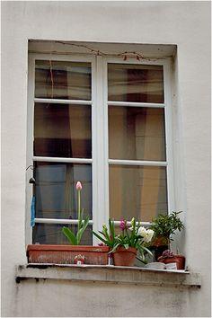 A windchime by the pane. Flowers at an early spring.