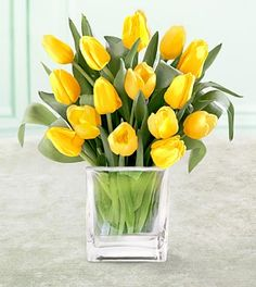 I love tulpis in any colour. Yellow Tulips, Tulips Flowers, Diy Flowers, Spring Flowers, Beautiful Flowers, Orange Yellow, Spring Flower Arrangements, Beautiful Flower Arrangements, Floral Arrangements
